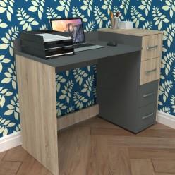 Компьютерный стол Минивайт-41